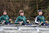 Crew: 8 - RGS Worcester - Int.4x-<br /> <br /> Head of the Severn (University of Worcester) 2017<br /> <br /> To purchase this photo, or to see pricing information for Prints and Downloads, click the blue 'Add to Cart' button at the top-right of the page.
