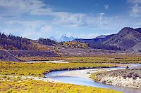 Autumn Color, Grand Tetons, golden aspens, Gros Ventre River Valley, Jackson Hole, Wyoming