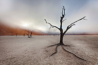 Sun rise through clearing fog in the Dead Vlei