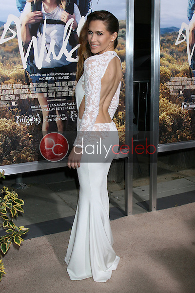 """Kimberly Cole<br /> at the """"Wild"""" Los Angeles Premiere, AMPAS Samuel Goldwyn Theater, Beverly Hills, CA 11-19-14<br /> David Edwards/Dailyceleb.com 818-249-4998"""