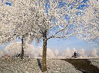 Fietsen langs de Amstel. Bomen zijn bedekt met rijp