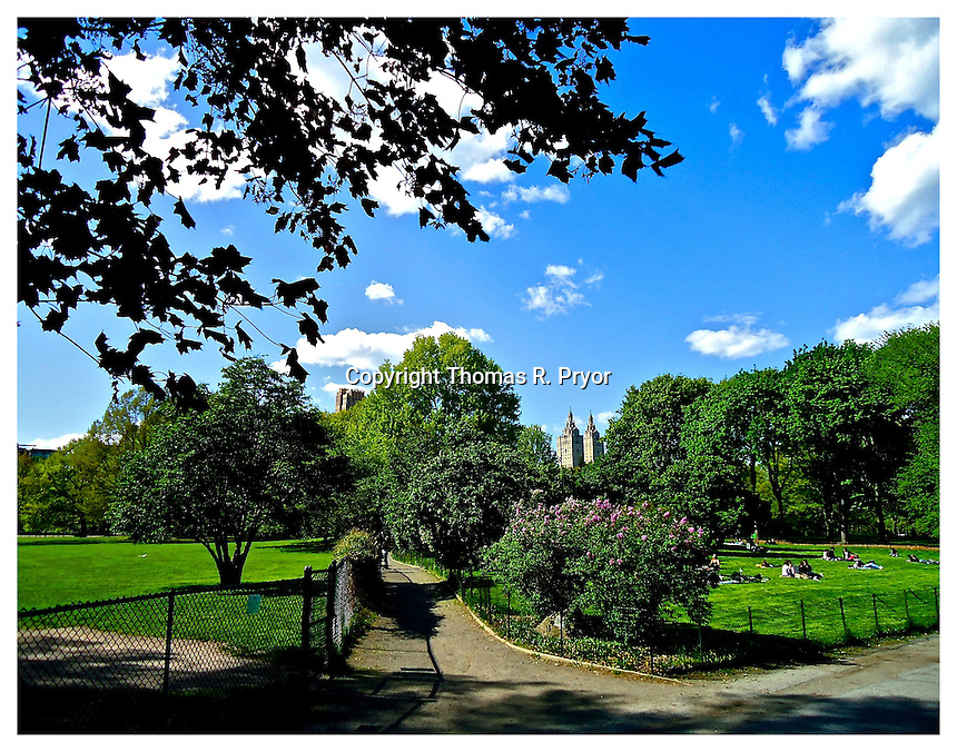 NEW YORK, NY - MAY 5: Photograph of Sheep Meadow in Central Park on May 5, 2011 in New York, New York. Photo Credit: Thomas R. Pryor