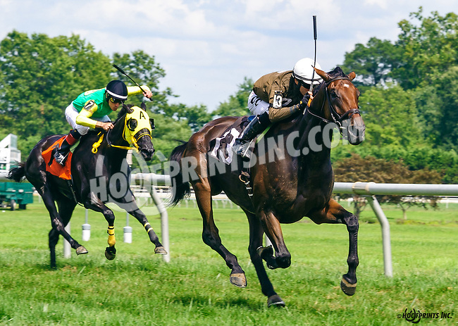 Maddizaskar winning at Delaware Park on 8/10/16