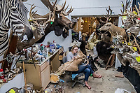 An assistant, Meg Rowland, on her first day at work, works on a customer order at Graves Taxidermy on the 16th of August, 2017 in Uvalde, Texas, USA. <br /> Photo Daniel Berehulak for the New York Times