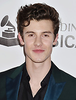 LOS ANGELES, CA - FEBRUARY 08: Shawn Mendes attends MusiCares Person of the Year honoring Dolly Parton at Los Angeles Convention Center on February 8, 2019 in Los Angeles, California.<br /> CAP/ROT/TM<br /> &copy;TM/ROT/Capital Pictures