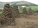 Armenia 2007 <br /> A Yezidi village in summer  <br /> Armenie 2007  <br /> Un village Yezidi en ete