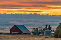 Gallatin County, MT: Colorful sunset over farmstead and Gallatin County