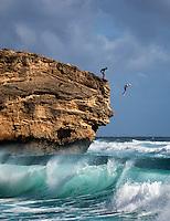 Man jumpimg into water off rock at Shipwreck Beach. Poipu, Kauai, Hawaii