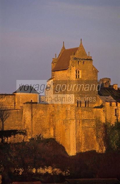 Europe/France/Poitou-Charentes/86/Vienne/Chauvigny: Château d'Harcourt dans la ville haute