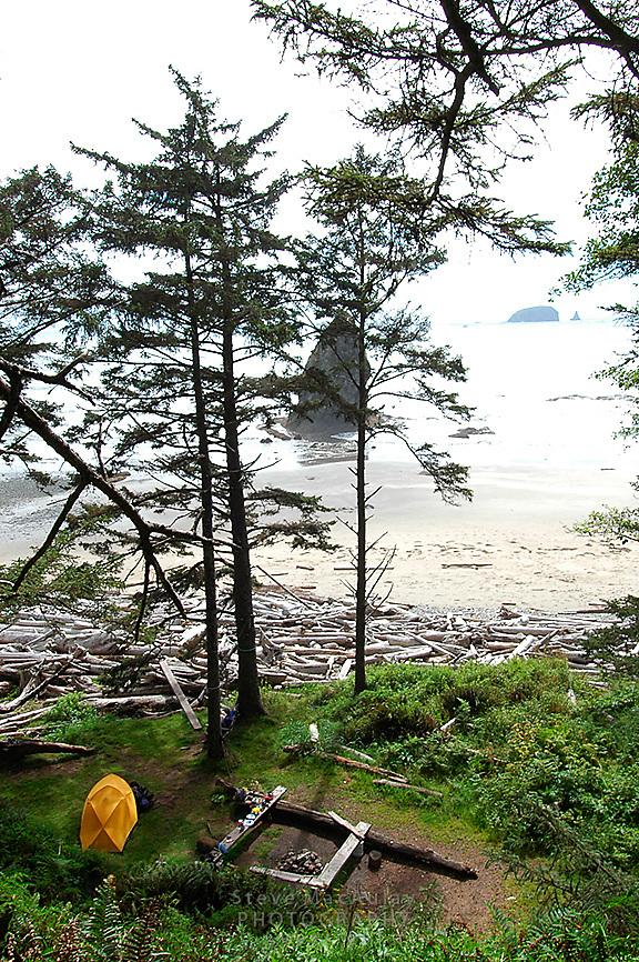 Coastal beach campsite, Olympic National Park, Coastal Strip, Olympic National Park, WA.