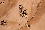..Samburu livestock, as seen from the air, illegally entering Samburu National Park searching for food and water. Holes are made in the dry Ewaso Nyiro riverbed to dig out water searching for any kind of moisture for their goats and cattle.. The worst drought (2008-2009) in more than a decade has killed most of the Samburu tribeman's livestock and threatens their own survival. .