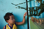 A boy plays with toy soldiers next to his Christmas tree in a squatter village in Manila.