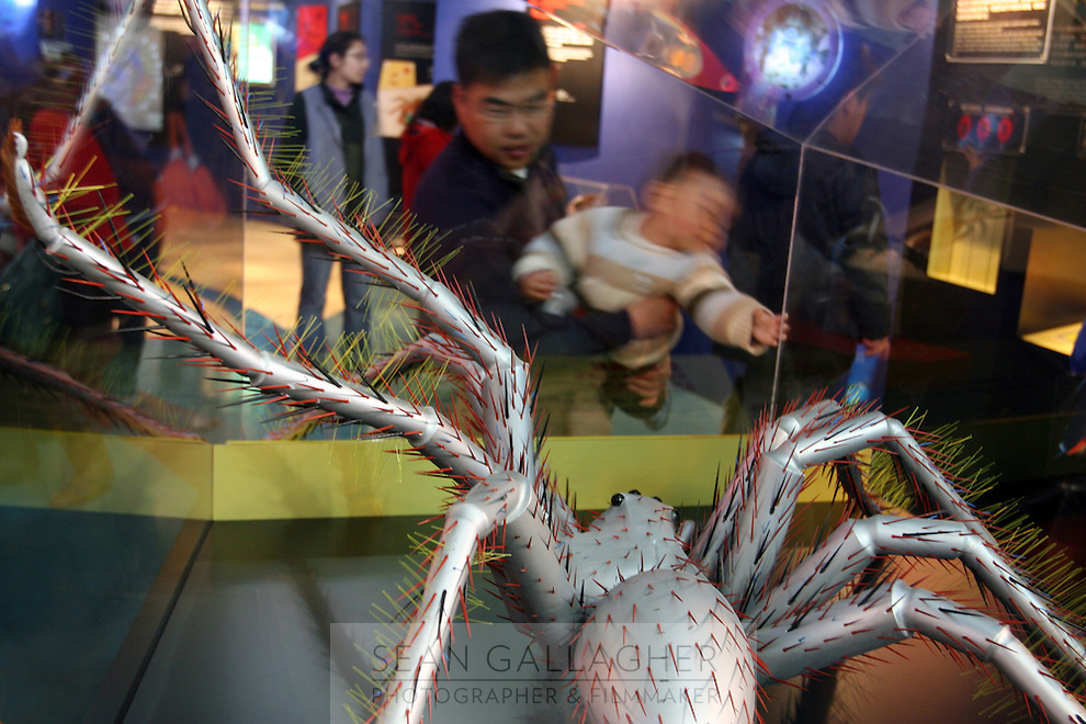 CHINA. Shanghai. A spider exhibit in the Shanghai Science and Technology Museum (?????; pinyin: Shàngh?i ke¯jì gu?n) is a large museum in Pudong, Shanghai, close to Century Park, the largest park of the city. The construction of the museum cost 1,75 billion RMB, and the floor area is 98 000m2 .2008..