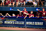 OKLAHOMA CITY, OK - JUNE 04: The Florida State Seminoles bench cheers against the Washington Huskies during the Division I Women's Softball Championship held at USA Softball Hall of Fame Stadium - OGE Energy Field on June 4, 2018 in Oklahoma City, Oklahoma. (Photo by Tim Nwachukwu/NCAA Photos via Getty Images)