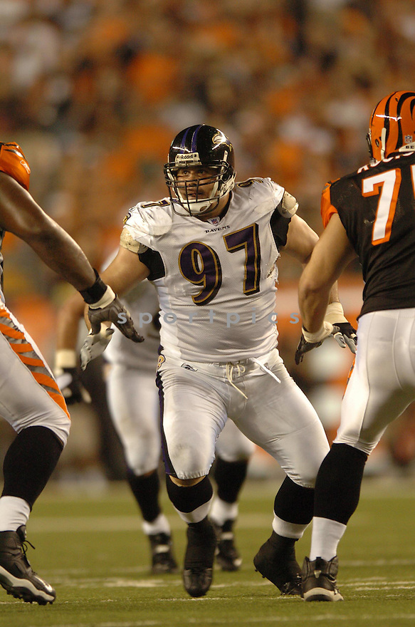 KELLY GREG, of the Baltimore Ravens, during the Raven game against the Cincinnati Bengals in Cincinnati, Ohio on Septmeber 9, 2007.  The Bengal won the game 27-20.... SportPics.......