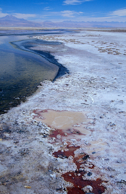 Salar de Atacama. San Pedro de Atacama. Plus grand depot de sel du Chili, 2305 m. alt. *** Salar de Atacama, San Pedro de Atacam. Biggest salt deposit of Chile (2305m.).