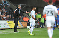 Bolton Wanderers manager Phil Parkinson protests a decision from the dug-out <br /> <br /> Photographer Kevin Barnes/CameraSport<br /> <br /> The EFL Sky Bet Championship - Swansea City v Bolton Wanderers - Saturday 2nd March 2019 - Liberty Stadium - Swansea<br /> <br /> World Copyright © 2019 CameraSport. All rights reserved. 43 Linden Ave. Countesthorpe. Leicester. England. LE8 5PG - Tel: +44 (0) 116 277 4147 - admin@camerasport.com - www.camerasport.com