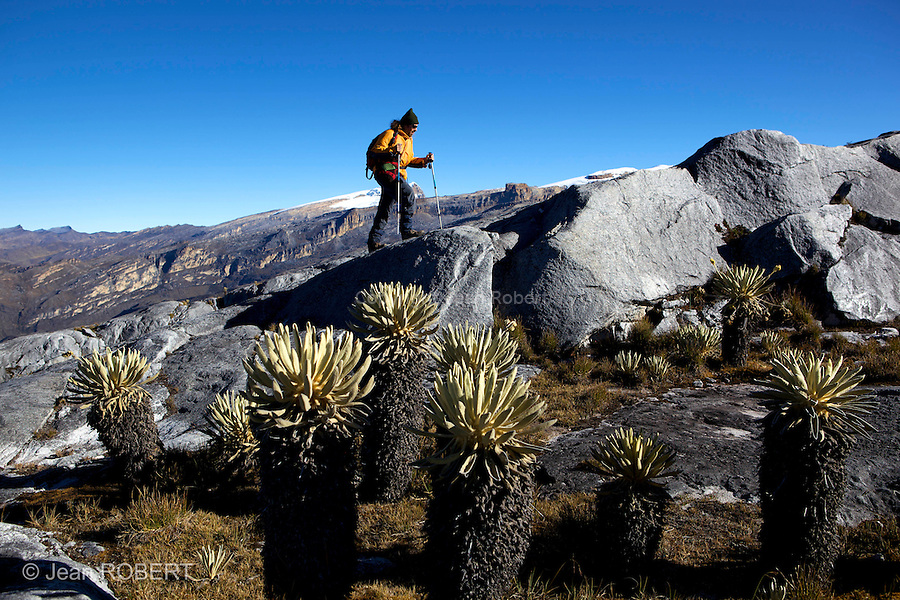 Montée vers pulpito del diablo.Sierra del Cocuy