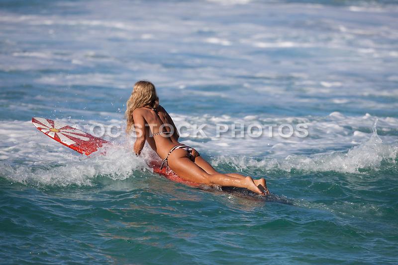 Orange County Surfer Girl