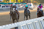 October 4, 2019 : Tiz the Law #7, ridden by Manny Franco, wins the Champagne Stakes at Belmont Park in Elmont, New York. Eric Kalet/Eclipse Sportswire/CSM