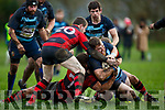 Killorglin Timmy Lynch takes three Ennis defenders with him as he drives over to score Killorglin first try on Sunday