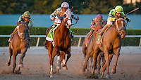 HALLANDALE, FL JANUARY 28:California Chrome #12, ridden by Victor Espinoza, comes around the final turn for home, with not enough to pull out and win the $12,000,000 Pegasus World Cup Invitational at Gulfstream Park Race Course on January 28, 2017 in Hallandale Beach, Florida. (Photo by Douglas DeFelice/Eclipse Sportswire/Getty Images)