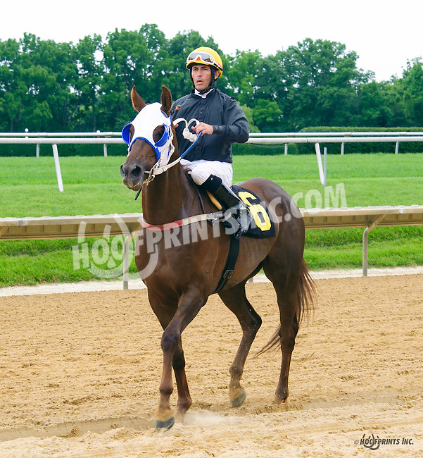 Nikos Red Star winning at Delaware Park on 6/15/16