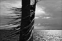 "Columbus Day<br /> From ""The Other Wind"" series. Miami, FL, 2008"