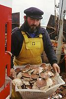"""Europe/France/Bretagne/22/Côtes d'Armor/Erquy: Pêcheurs - retour de la pêche à la coquille Saint Jacques sur le bateau """"arc en ciel"""" [Non destiné à un usage publicitaire - Not intended for an advertising use]"""