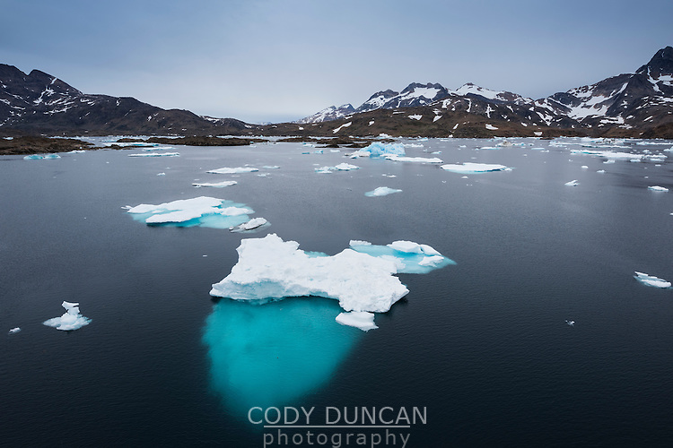 Late summer icebergs drift in water of Kong Oscars Havn, Tasiilaq, Greenland