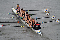 Crew: 155 Chesterton Rowing Club A<br /> <br /> Women's Head of the River (WeHoRR) 2017<br /> <br /> To purchase this photo, or to see pricing information for Prints and Downloads, click the blue 'Add to Cart' button at the top-right of the page.