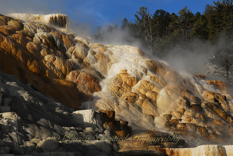 Mammoth Terraces at Mammoth Hot Springs Yellowstone National Park. Colorful and intriguing geothermal rock formations.
