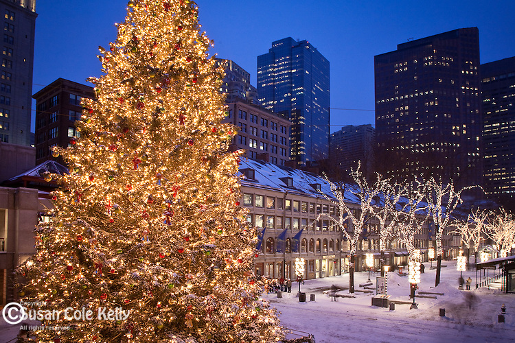 Christmas tree at Quincy Market, Boston, MA