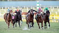 HALLANDALE BEACH, FL - JAN 13:Shining Copper #5 with Jose Ortiz on board for trainer Michael J. Maker the $200,000 Fort Lauderdale Stakes at Gulfstream Park on January 13, 2018 in Hallandale Beach, Florida. (Photo by Bob Aaron/Eclipse Sportswire/Getty Images)