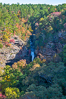 Autumn at Cedar Falls-Vertical - A cedar fall drops down over the cliff where you can see a variety of colorful trees on it journey to the river below in a vertical format. This wilderness area has many native trees the many cedars, and pines like the southern yellow pine or loblolly pines but also included are the sugar and red maples, the oaks, black hickory along with a pop of red from the sweet gum tree through out the hill side in the fall season. The waters flow from upstream where Lake Bailey is dammed in the Jean Petit Park.