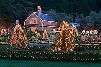 Christmas lights at Shore Acres State Park. Oregon