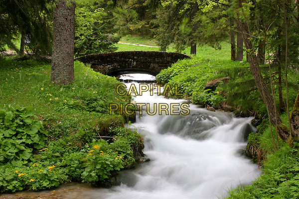 LAKE.Zakopane, Poland..park tarvel nature scenery gv g.v. general view trees green water running falls .CAP/JOZ.©George Jozwiak/Capital Pictures.
