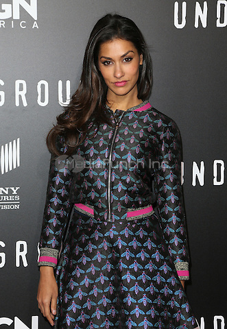 WESTWOOD, CA - February 28: Janina Gavankar, At The Regency Village Theatre In California on February 28, 2017. Credit: Faye Sadou/MediaPunch