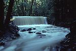 Laguna Creek in Bonny Doon at high water