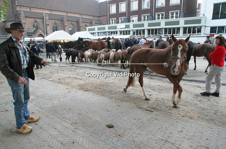 Foto: VidiPhoto..BEMMEL - De eerste en grootste ponymarkt van Nederland heeft maandag een primeur. Voor het eerst waren er ook handelaren uit Irak. En daarmee zet de internationale ponyjaarmarkt een trend, verwacht de organisatie. Er blijkt namelijk vanuit het Midden-Oosten veel belangstelling voor Nederlandse pony's. Met een aanvoer van ruim 1300 pony's (en paarden), was de ponymarkt ditmaal ook groter dan ooit. Naast handelaren uit Irak, was er ook veel belangstelling vanuit Portugal, Frankrijk, Italië en Duitsland. Dat wordt vermoedelijk veroorzaakt door de relatief lage prijzen voor pony's en paarden in Nederland.