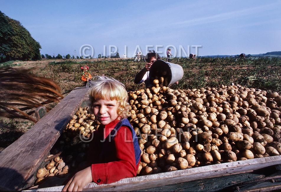 Poland, September, 1981 - Farmers in the Torun region gather potatoes. Many crops grow well in the rich soil of Poland, however the Poles rarely enjoy a bountiful harvest. The USSR appropriates most of the crops and send them to other areas, leaving only meager rations behind for Polish farmers.<br /> Pologne, septembre 1981 &ndash; Les fermiers de la r&eacute;gion de Torun r&eacute;coltent leur pommes de terre. Les r&eacute;coltes sont g&eacute;n&eacute;reuses, le sol polonais est fertile et le climat cl&eacute;ment. Mais l&rsquo;URSS redirige ces biens vers d&rsquo;autres directions ne laissant que de maigres stocks &agrave; la population locale. M&ecirc;me chose pour le lait et la viande.