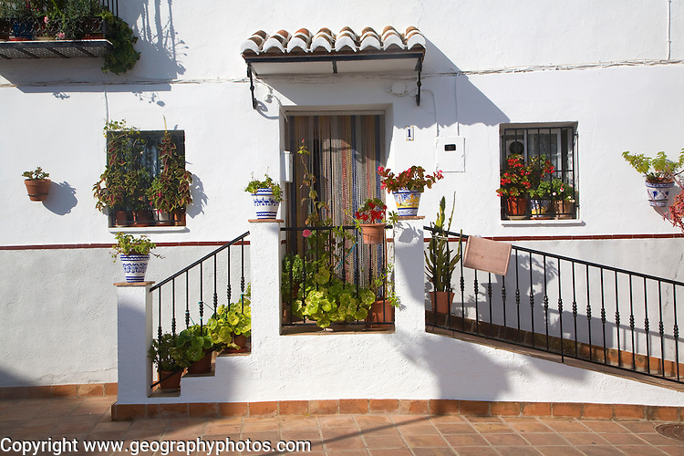 Potted plants outside home in the<br />