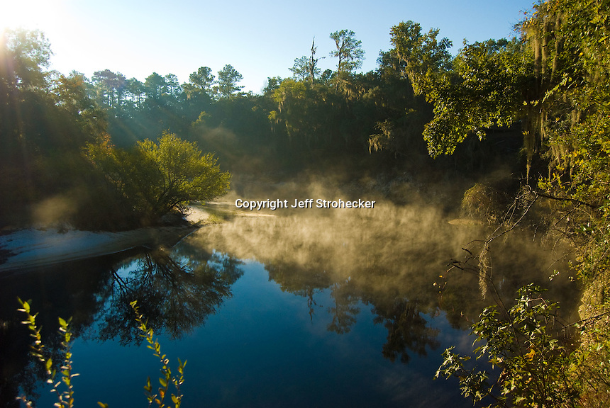 Morning on the Suwannee River Florida.