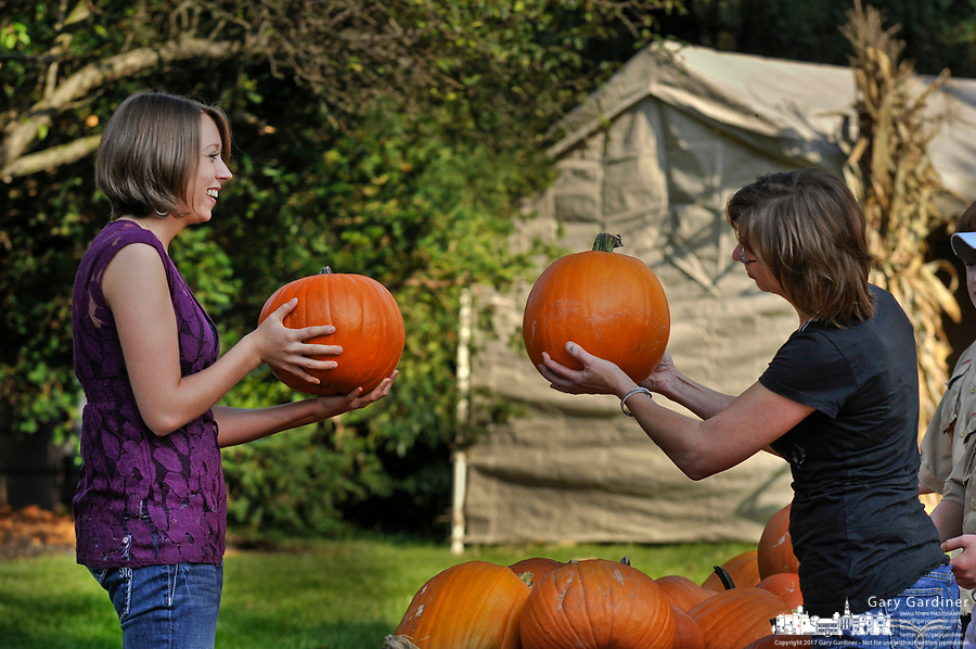 Mother and daughter compare pumpkins as they search for the best pumpkins among the hundreds displayed for sale in the front yard of the Masonic Temple in Westerville, OH. The pumpkins are a fund raiser for Boy Scout Troop 560.