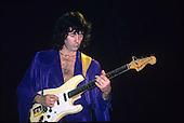 May 1987: DEEP PURPLE - Rosemont Horizon Illinois USA
