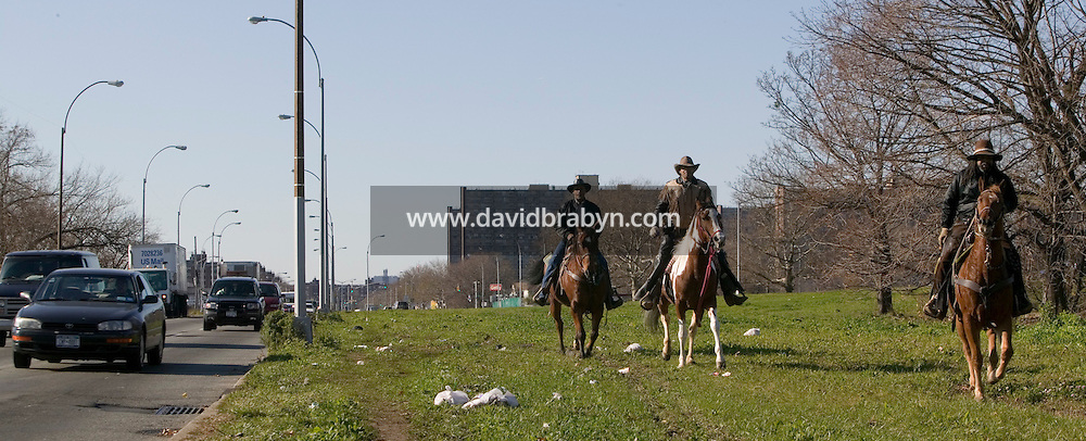 2 December 2006 - New York City, NY - Eric Jackson (L), aka Cowboy Little Red, R. W. Hall (C), aka Curly, and Lenard Hebert, members of the Federation of Black Cowboys, ride alongside traffic in the borough of Queens in New York City, USA, 2 December 2006. The Federation gathers black men and women who recreate the heritage of black cowboys, teach kids to ride and put on 'rodeo showdeos'.