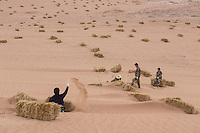 Chinese afforestation workers prepare straw stacks in the desert areas of Minqin county in Gansu province, October 2016. Locals poke straw partway into the sand, forming a pattern of small squares. The grid like network of straw fences break the force of the wind at ground level, stopping dune movement by confining the sand within the squares of the grid. Minqin county is located in between the Tengger Desert and the Badain Jaran Desert.