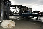 ADDIS ABABA - ETHIOPIA - 18 APRIL 2004-- Stray dog in the centre Addis.--PHOTO: JUHA ROININEN / EUP-IMAGES