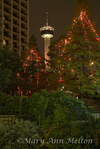 A view of the Tower of Americas from San Antonio's Riverwalk