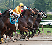 Claiborne Farm's Cease (9) was impressive winning on Sunday.